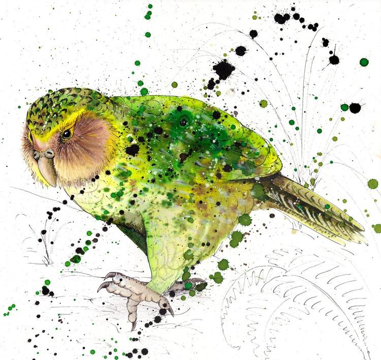 Kakapo - Image 0