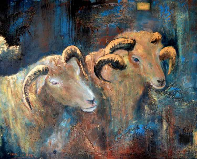 Two sheeps with curled horns -