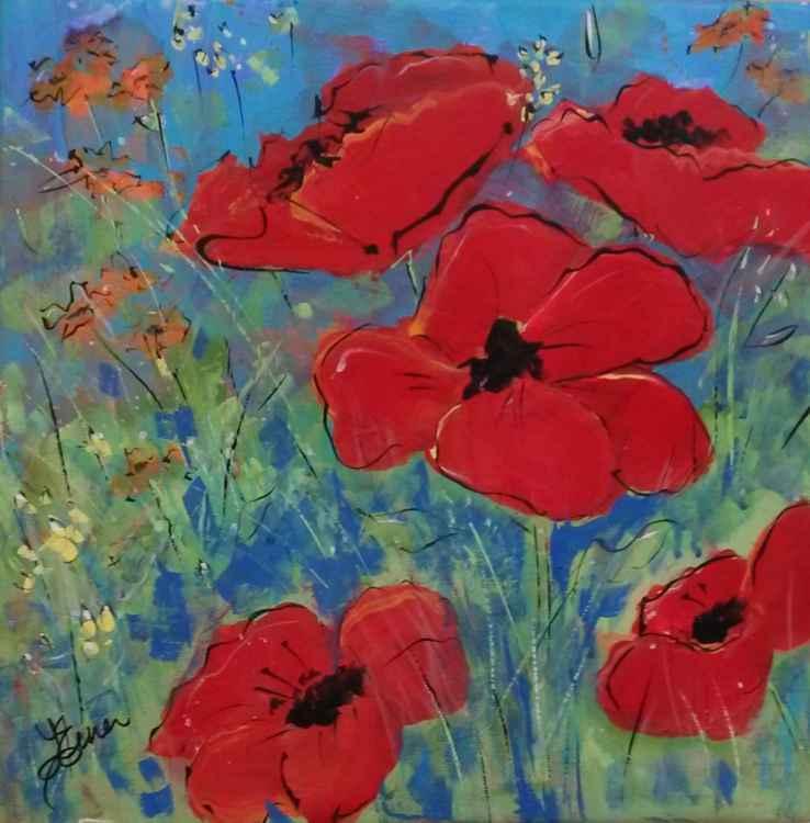 Poppy Fields -