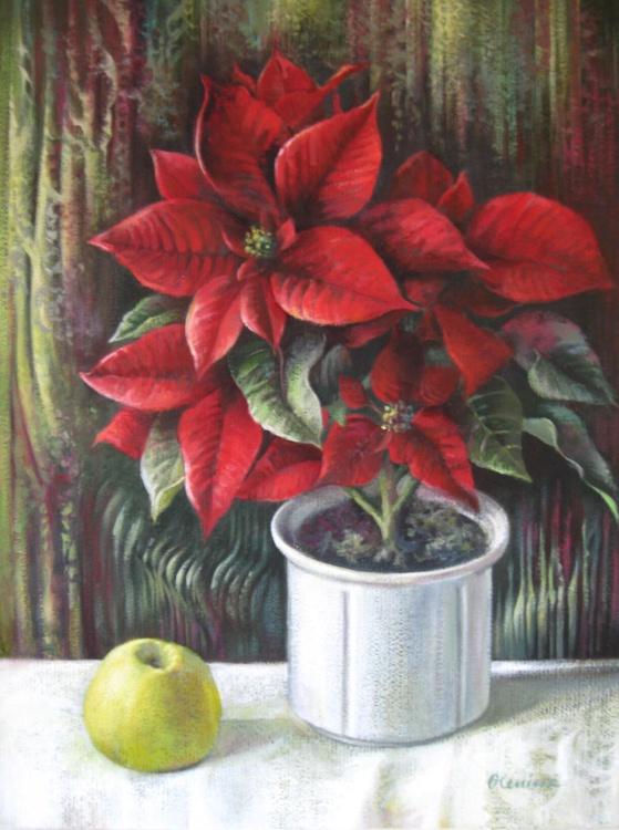 Christmas colors - Image 0