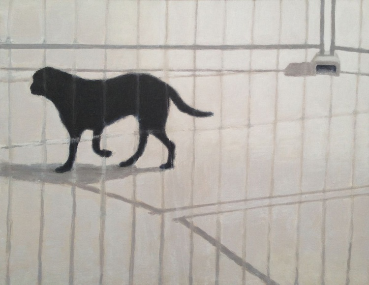 Exeter -  Devon - Black dog in boat yard - Image 0