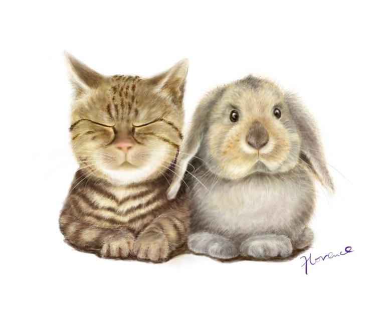 CAT AND RABBIT - Image 0