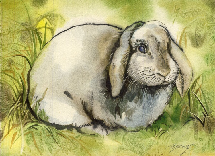 Bunny at ease - Image 0