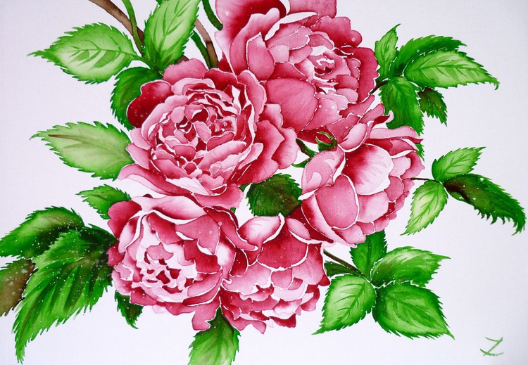 August Roses - Image 0