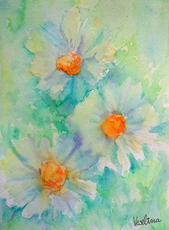 Watercolour daisies -