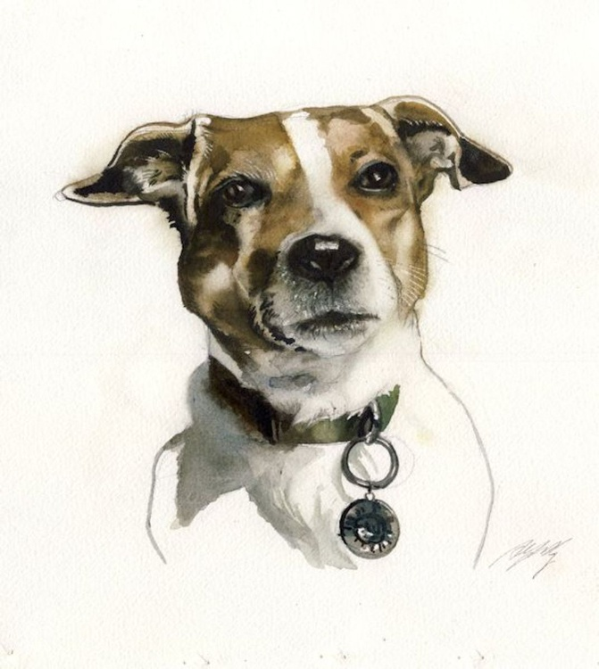 Jack Russell watercolor - Image 0