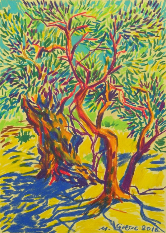 Olive trees and shadows - Image 0