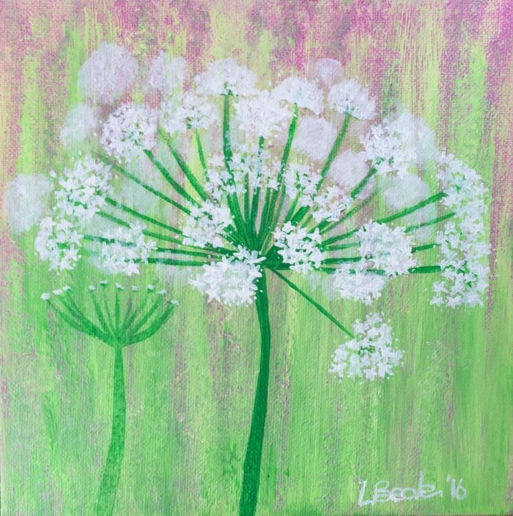 Cow Parsley - Image 0