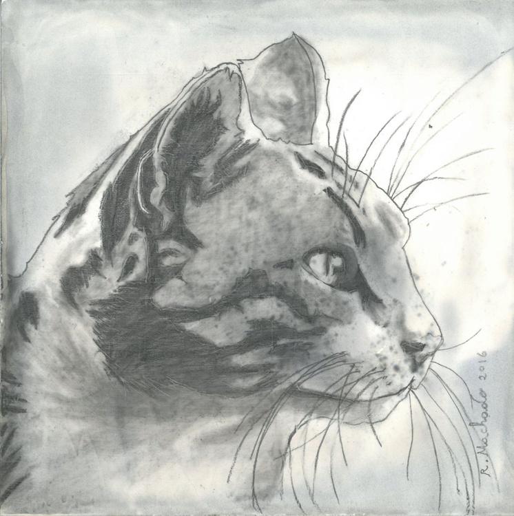 Cat art I - Image 0