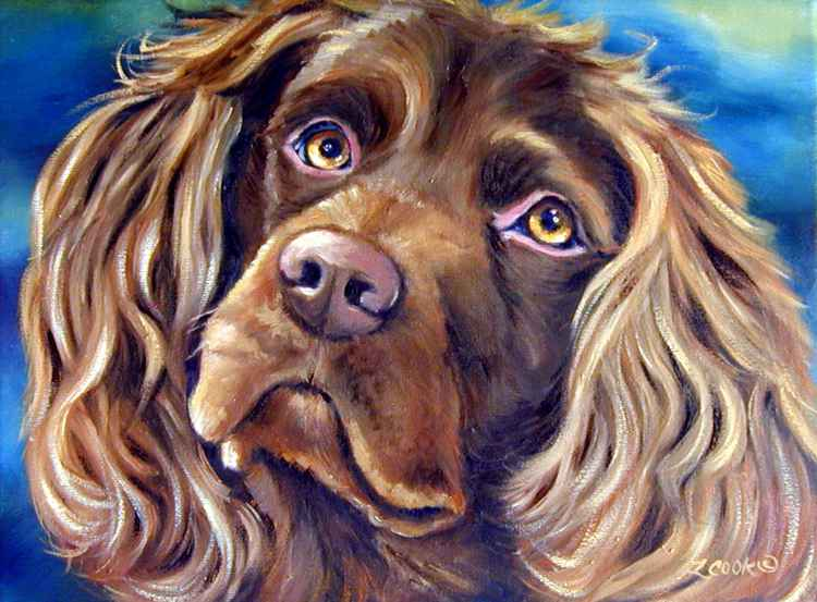 Boykin Spaniel Original Fine Art Oil painting portrait