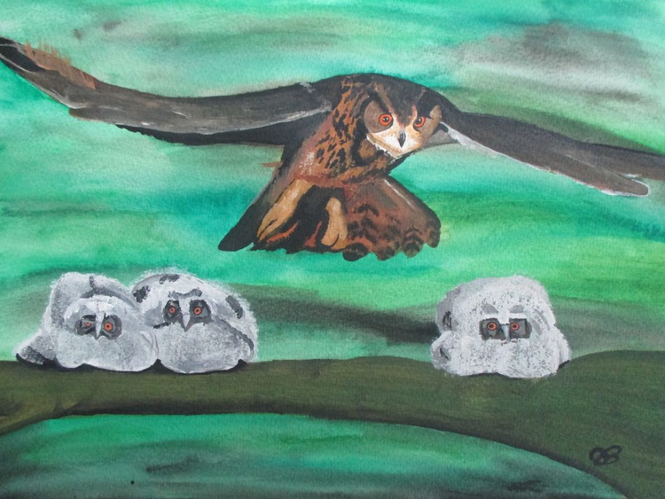 Owl's - Image 0