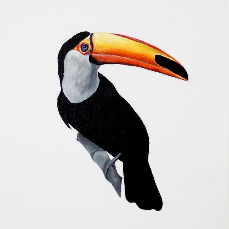 Toucan - Image 0