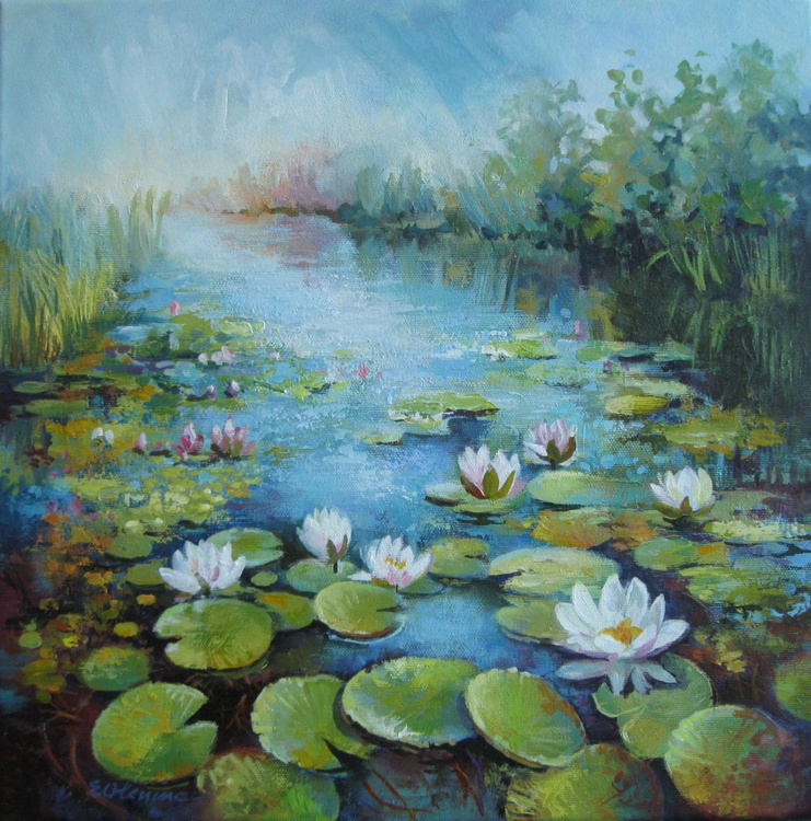 Waterlily pond - Image 0