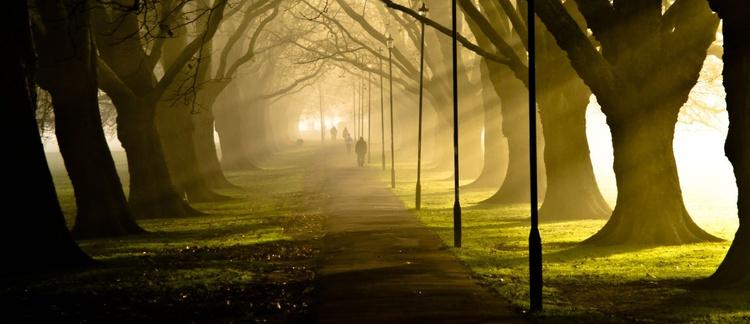 Jesus Green, Cambridge - Image 0