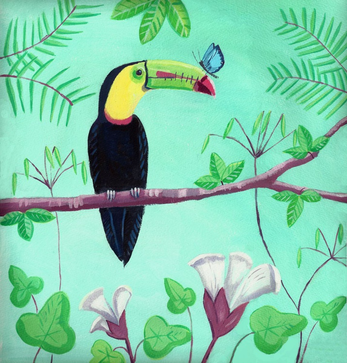 Toucan - Image 0