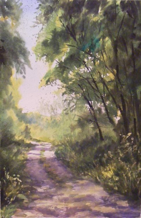 Summer shadows on rural road - Image 0