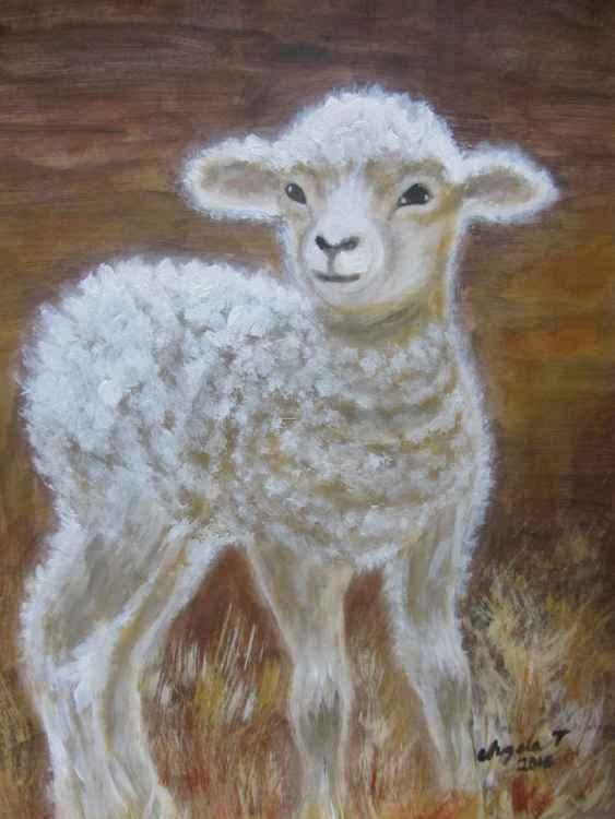 Lamb -