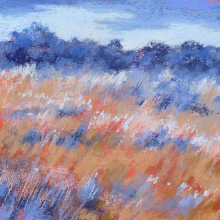 A Breeze on the Heath -