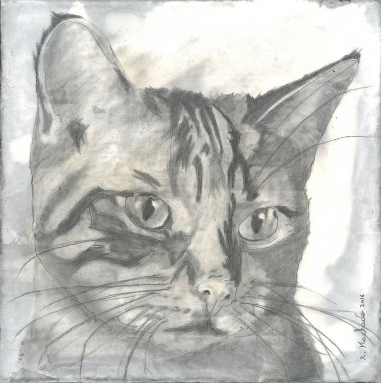 Cat art II - Image 0