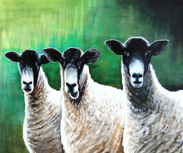 Who are Ewe looking at ! - Image 0
