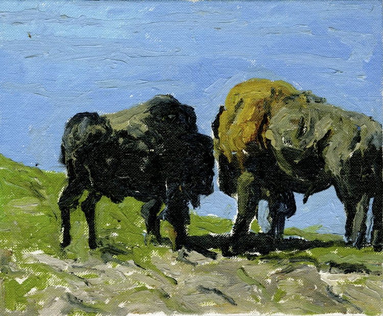 Two Buffalo - Image 0