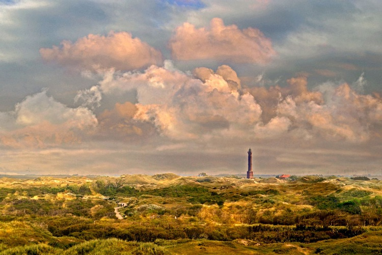 In the Dunes of Norderney - Image 0