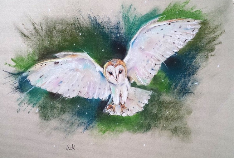 In Flight - Barn Owl - Pastel painting on paper - Impressionist - Image 0