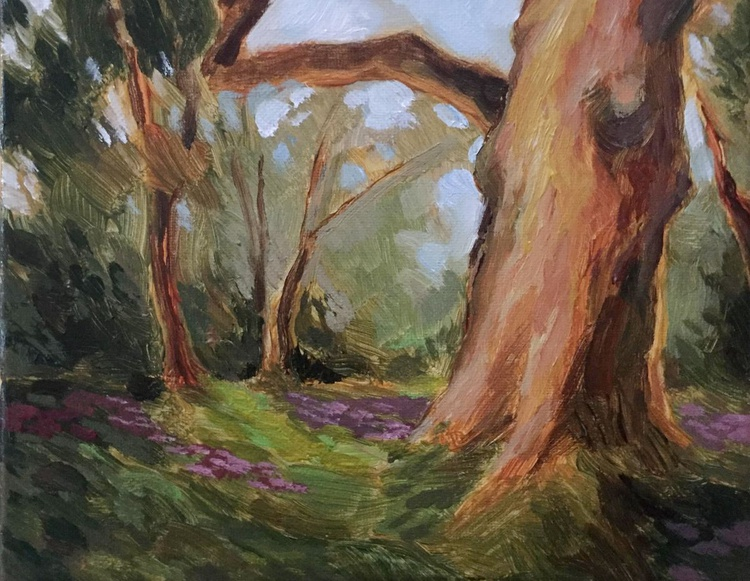 The Woods in Spring - Image 0