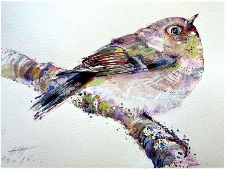 bird watercolour original illustration
