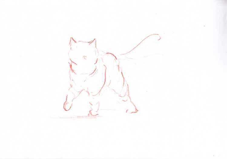 Orange cat 3021L1 -