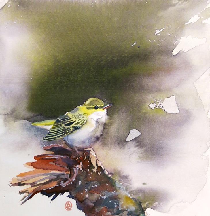 The Wood Warbler - Image 0