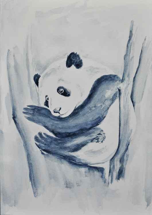 Panda Study 02