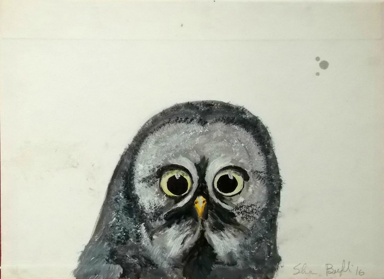 The owl - Image 0