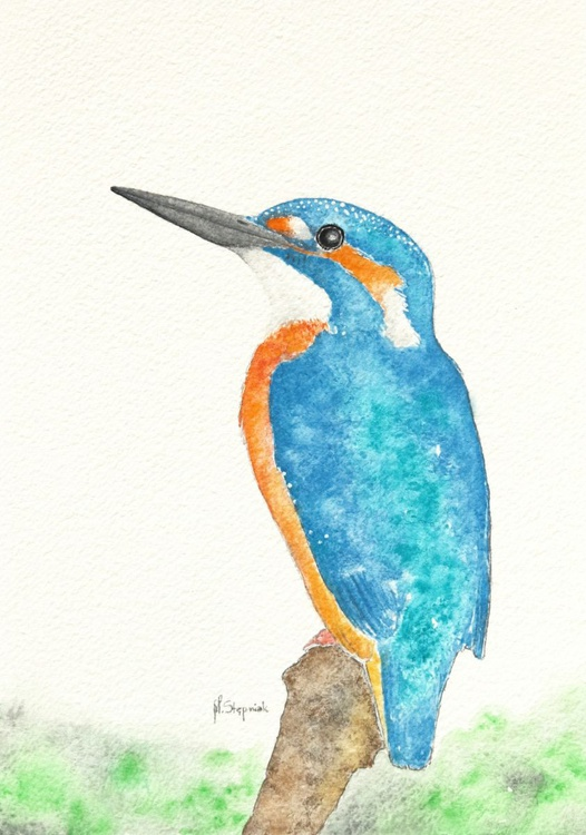 The common kingfisher (Alcedo atthis) - Image 0