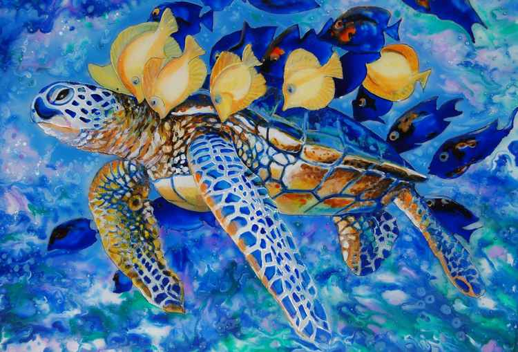Turtle swimming with fish (ref 1604) -