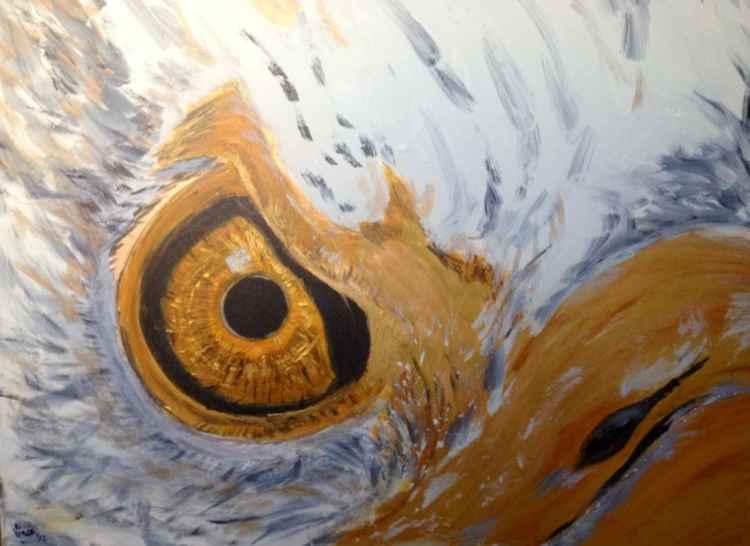 Eagle eye -