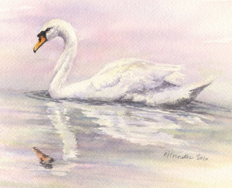 Swan #1 - Rosy Glow - Image 0