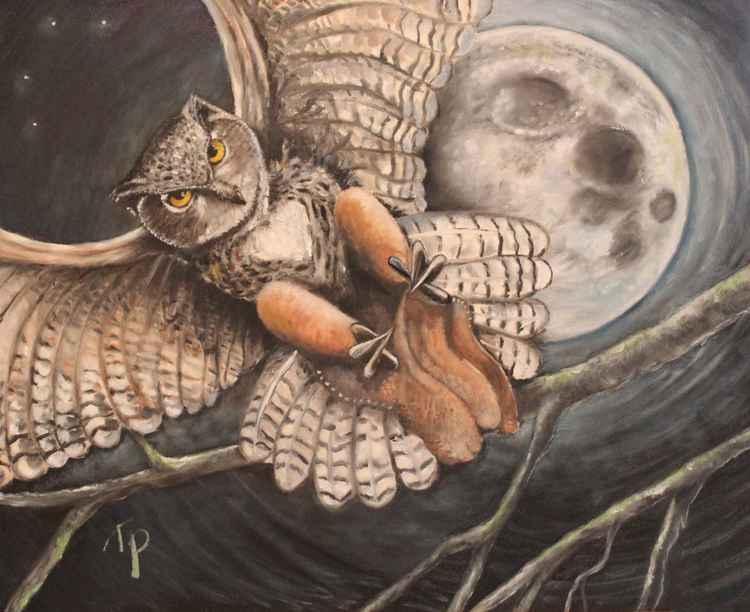 Horned Owl Decending -