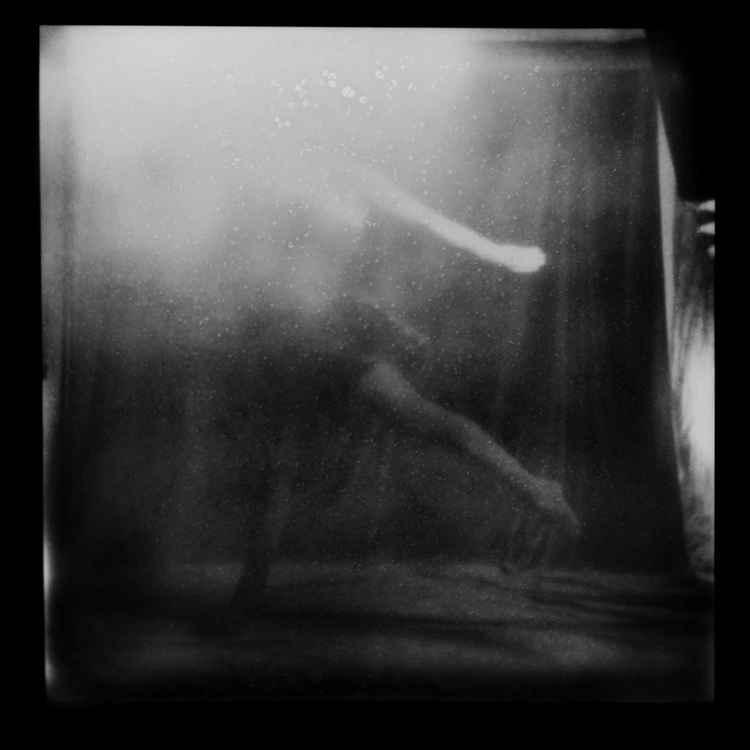 Polaroid 3 -