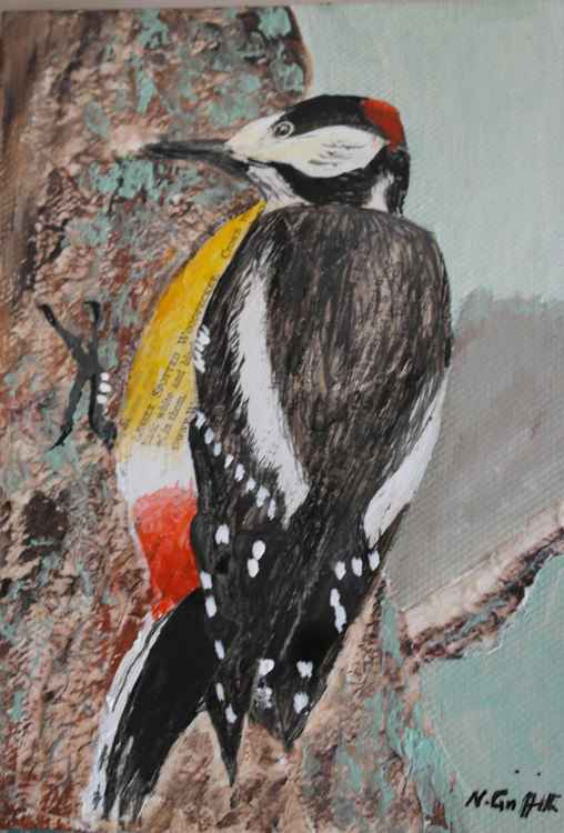 Lesser Spotted Woodpecker -