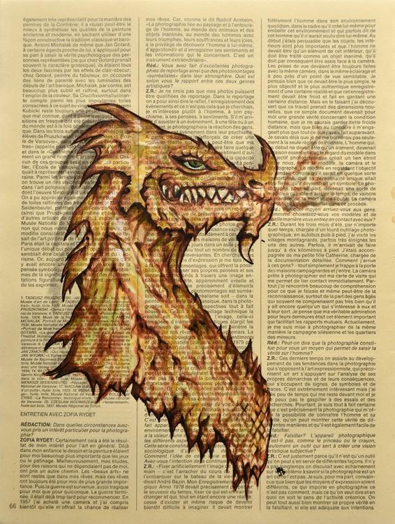 Dragon's Lair - Image 0