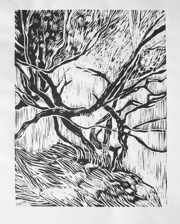 Tea Trees on beach cliff - woodcut print - Image 0