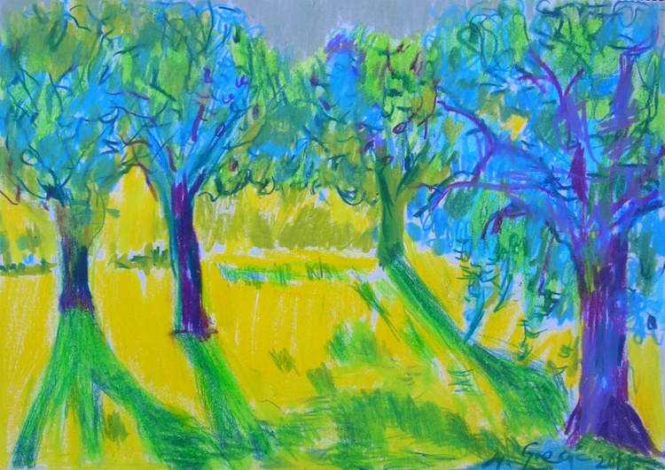 Canopy of trees - Image 0