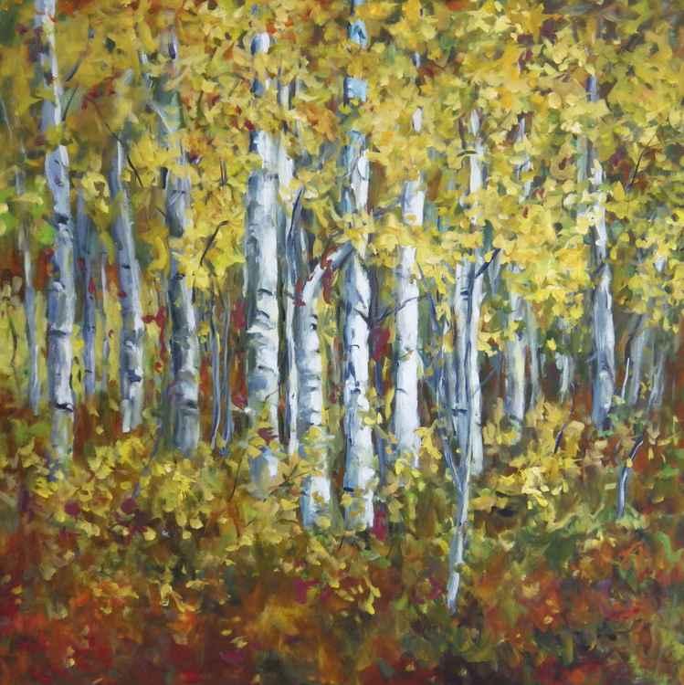 Birch Forest -
