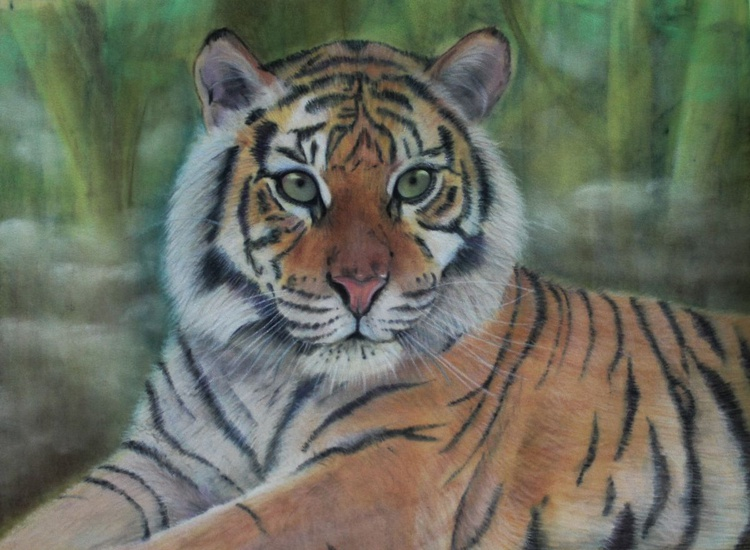 The Gaze, pastel picture of a tiger - Image 0
