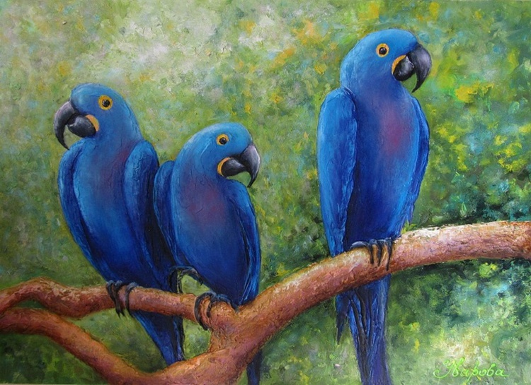 Blue aras, oil on canvas, 70x50 cm, original artwork, FREE SHIPPING - Image 0