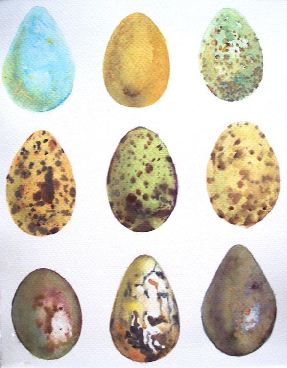 Birds' Eggs - Image 0