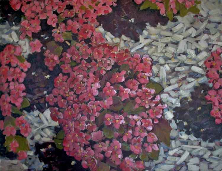 Azaleas 30x42 inches unframed -