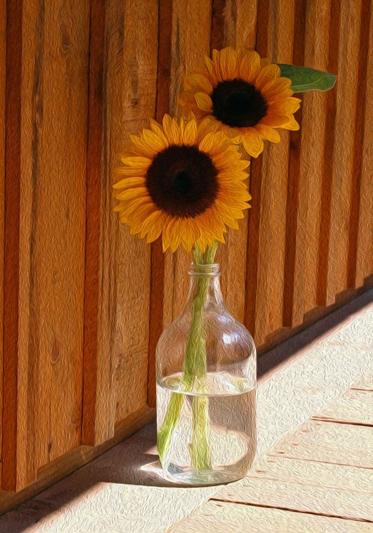 Sun Porch - Image 0