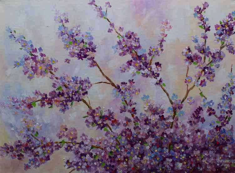 Sakura blossoms -
